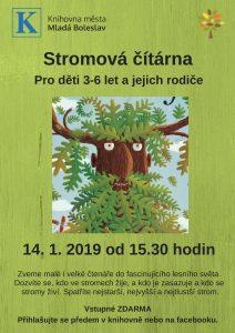Stromova citarna.1